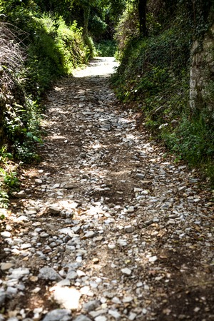 Very rocky road in the middle of forest. Tons of small stones, rocks, sands on the ground. Tourist have an adventurous walk passing this small pathway to somewhere. Banque d'images