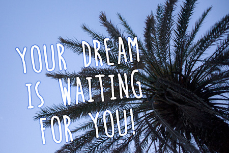 Handwriting text Your Dream Is Waiting For You. Concept meaning Goal Objective Intention Target Yearning Plan Tall palm tree blue sky ideas messages thoughts feelings reflections