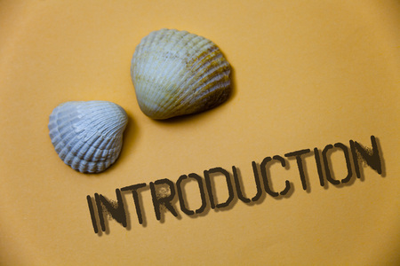 Handwriting text writing Introduction. Concept meaning First part of a document Formal presentation to an audience Grunge ideas messages shells light brown background beach memories thoughts Stockfoto