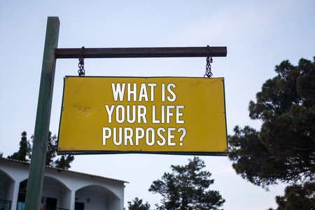 Word writing text What Is Your Life Purpose Question. Business concept for Personal Determination Aims Achieve Goal Wooden board hang hanging post ideas messages feelings trees blue sky