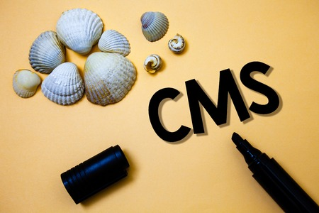 Conceptual hand writing showing Cms. Business photo text Content Management System supports modification of digital content Yellow background shadow open marker shells beach memory memories