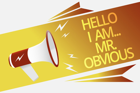 Text sign showing Hello I Am.. Mr.Obvious. Conceptual photo introducing yourself as pouplar or famous person Megaphone loudspeaker speech bubble important message speaking out loud