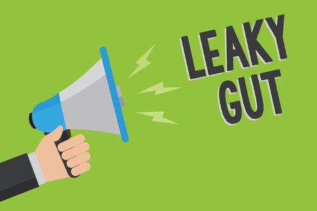 Writing note showing Leaky Gut. Business photo showcasing A condition in which the lining of small intestine is damaged Man holding megaphone loudspeaker green background message speaking