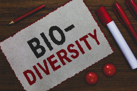 Conceptual hand writing showing Bio Diversity. Business photo showcasing Variety of Life Organisms Marine Fauna Ecosystem Habitat White paper red borders markers pencils wooden background Banco de Imagens