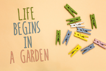 Text sign showing Life Begins In A Garden. Conceptual photo Agriculture Plants growing loving for gardening Yellow base with painted texts colorful paper clips laid randomly on ground