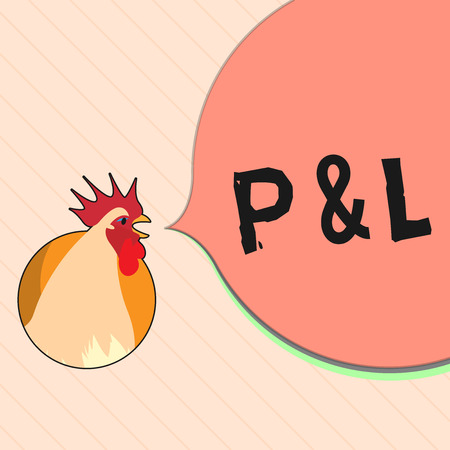 word writing text p and l business concept for primary financial