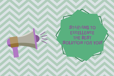 Text sign showing Starving To Excellence The Best Solution For You. Conceptual photo Make things perfect Megaphone with Sound Volume Effect icon and Blank 8 Pointed Star shape
