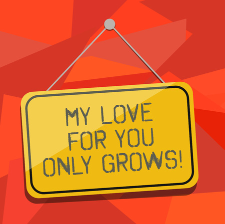Word writing text My Love For You Only Grows. Business concept for Expressing roanalysistic feelings good emotions Blank Hanging Color Door Window Signage with Reflection String and Tack