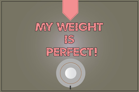 Handwriting text My Weight Is Perfect. Concept meaning Being in great shape stay fit Healthy lifestyle Coffee Cup Saucer Top View photo Reflection on Blank Color Snap Planner