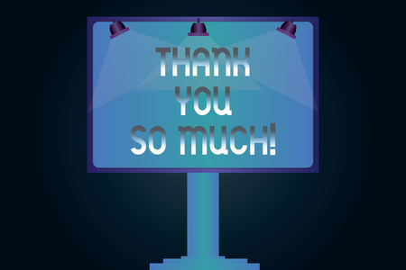 Word writing text Thank You So Much. Business concept for Expression of Gratitude Greetings of Appreciation Blank Lamp Lighted Color Signage Outdoor Ads photo Mounted on One Leg