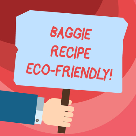 Word writing text Baggie Recipe Eco Friendly. Business concept for shopping bag which can be reused analysis times analysis Hand Holding Blank Colored Placard with Stick photo Text Space Imagens
