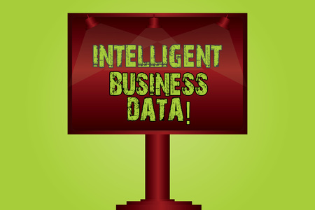 Text sign showing Intelligent Business Data. Conceptual photo use of internal data to analyze the operations Blank Lamp Lighted Color Signage Outdoor Ads photo Mounted on One Leg