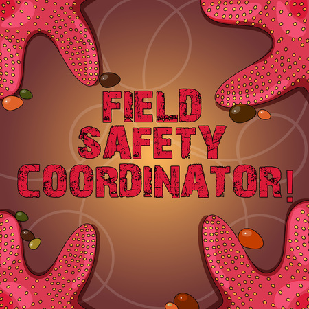 Text sign showing Field Safety Coordinator. Conceptual photo Ensure compliance with health and safety standards Starfish photo on Four Corners with Colorful Pebbles for Poster Ads Cards