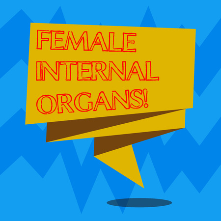 Text sign showing Female Internal Organs. Conceptual photo The internal genital structures of the Folded 3D Ribbon Strip Solid Color Blank Sash photo for Celebration Stock Photo