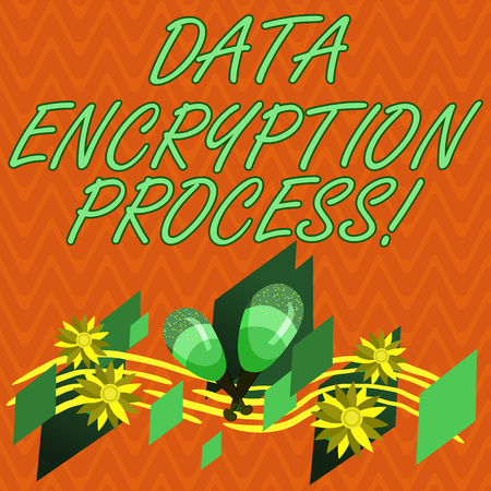 Writing note showing Data Encryption Process. Business photo showcasing The method of translating data into another form Colorful Instrument Maracas Handmade Flowers and Curved Musical Staff Stock Photo