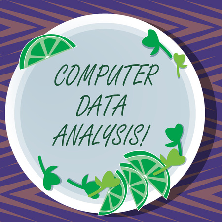 Word writing text Computer Data Analysis. Business concept for using computer to assist qualitative data analysis Cutouts of Sliced Lime Wedge and Herb Leaves on Blank Round Color Plate