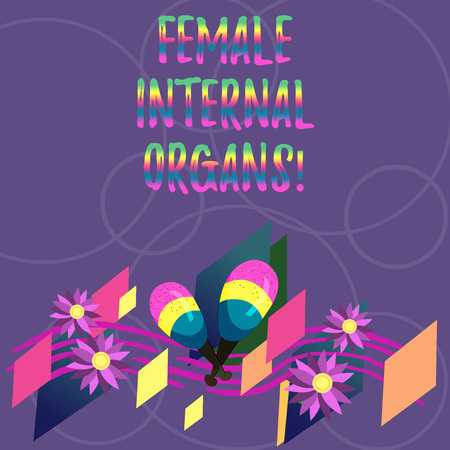 Word writing text Female Internal Organs. Business concept for The internal genital structures of the Colorful Instrument Maracas Handmade Flowers and Curved Musical Staff