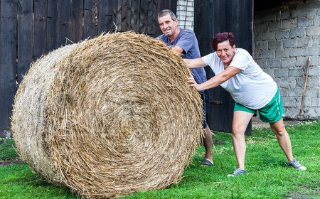 A smiling couple rolling hay bale on green grass in a bright sunny day. Husband and wife preparing for the coming winter. Typical scenario in rural area. Countryside living