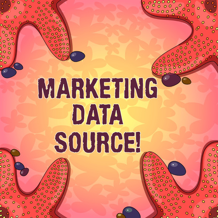 Word writing text Marketing Data Source. Business concept for connection set up to a database from a server Starfish photo on Four Corners with Colorful Pebbles for Poster Ads Cards