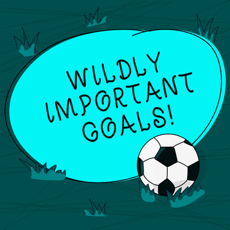 Conceptual hand writing showing Wildly Important Goals. Business photo text most important objective that needs special attention Soccer Ball on the Grass and Blank Round Color Shape photo