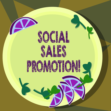 Text sign showing Social Sales Promotion. Conceptual photo provide added value or incentives to consumers online Cutouts of Sliced Lime Wedge and Herb Leaves on Blank Round Color Plate
