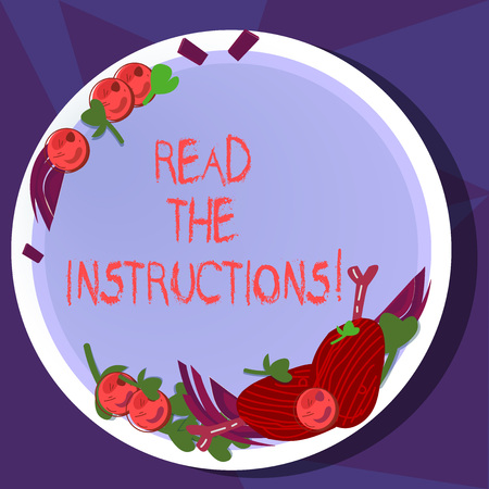 Text sign showing Read The Instructions. Conceptual photo carefully read something that someone tells you to do Hand Drawn Lamb Chops Herb Spice Cherry Tomatoes on Blank Color Plate