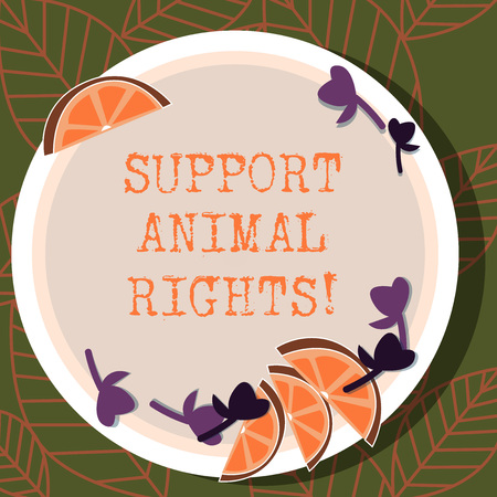 Writing note showing Support Animal Rights. Business photo showcasing protection and proper treatment of all animals Cutouts of Sliced Lime Wedge and Herb Leaves on Color Plate Standard-Bild