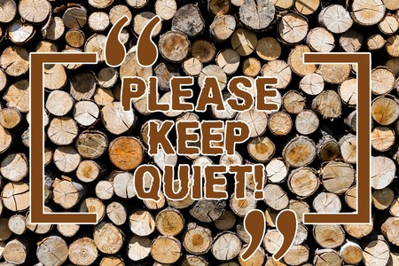 Text sign showing Please Keep Quiet. Conceptual photo prevent someone from speaking saying something secret Wooden background vintage wood wild message ideas intentions thoughts