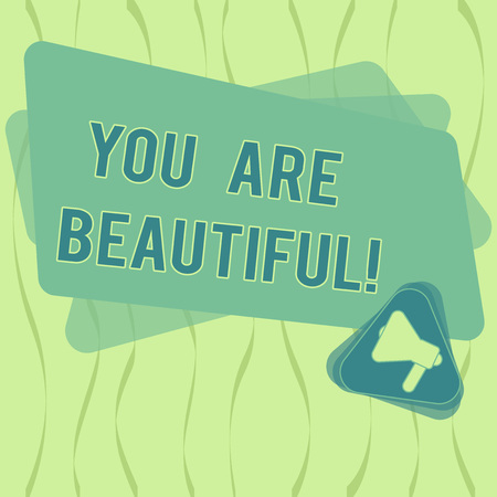 Writing note showing You Are Beautiful. Business photo showcasing telling girl that she has good looking from outside Megaphone Inside Triangle and Blank Color Rectangle for Announcement