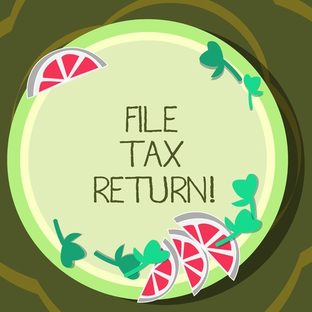 Conceptual hand writing showing File Tax Return. Business photo showcasing Paperwork to get financial money returning accountant job Cutouts of Sliced Lime Wedge and Herb Leaves on Color Plate Фото со стока