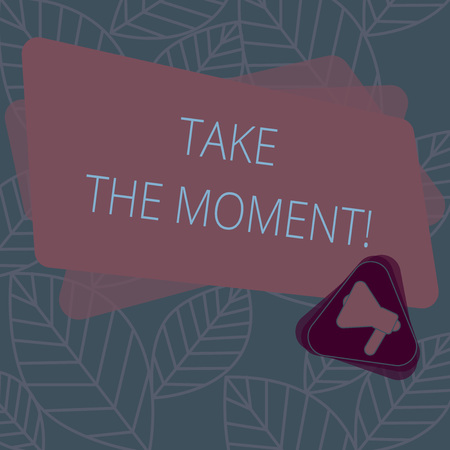 Conceptual hand writing showing Take The Moment. Business photo text Seize the day and opportunity be happy optimistic positive Megaphone Inside Triangle and Rectangle for Announcement Stock Photo