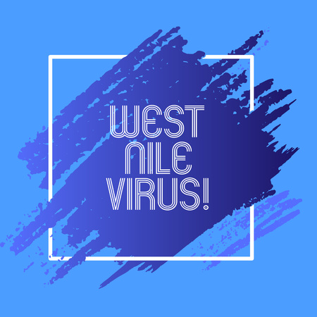 Word writing text West Nile Virus. Business concept for Viral infection cause typically spread by mosquitoes