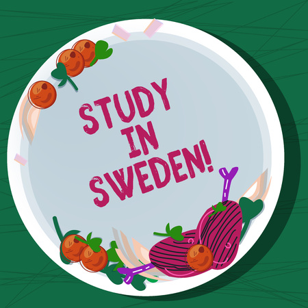 Writing note showing Study In Sweden. Business photo showcasing Travel to European country for educational purposes Hand Drawn Lamb Chops Herb Spice Cherry Tomatoes on Blank Color Plate