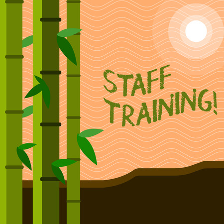 Text sign showing Staff Training. Conceptual photo Teaching Teamwork new things Employee Education Preparation Archivio Fotografico
