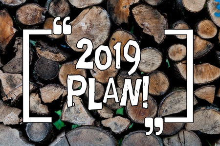 Conceptual hand writing showing 2019 Plan. Concept meaning Challenging Ideas Goals for New Year Motivation to Start Wooden background vintage wood wild message ideas thoughts
