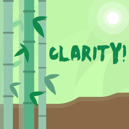 Conceptual hand writing showing Clarity. Concept meaning Certainty Precision Purity Comprehensibility Transparency Accuracy Colorful Set of Leafy Bamboo and Moon or Sun with Round Beam Stok Fotoğraf
