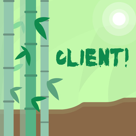 Conceptual hand writing showing Client. Concept meaning Purchaser Customer Shopper User Patron Prospect Sharer Investor Buyer Colorful Set of Leafy Bamboo and Moon or Sun with Round Beam