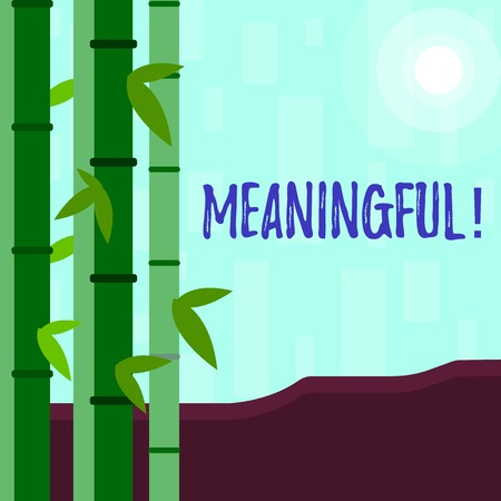 Writing note showing Meaningful. Business concept for Having meaning Significant Relevant Important Purposeful Colorful Set of Leafy Bamboo and Moon or Sun with Round Beam