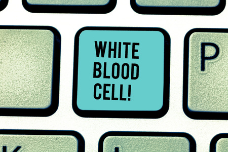 Conceptual hand writing showing White Blood Cell. Concept meaning Leucocytes in charge of protect body from infections Keyboard key Intention to create computer message idea Stock fotó