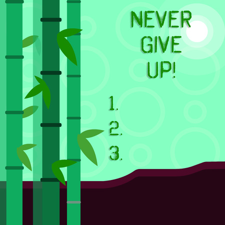 Conceptual hand writing showing Never Give Up. Concept meaning Be persistent motivate yourself succeed never look back Colorful Set of Leafy Bamboo and Moon or Sun with Round Beam Stockfoto