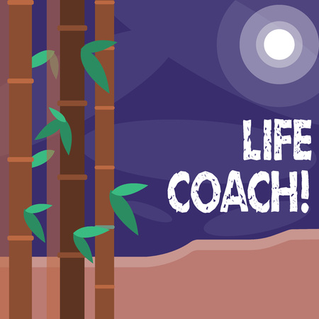 Word writing text Life Coach. Business photo showcasing demonstrating employed to help showing attain their goals career Colorful Sets of Leafy Bamboo on Left Side and Moon or Sun with Round Beam Imagens - 119865076