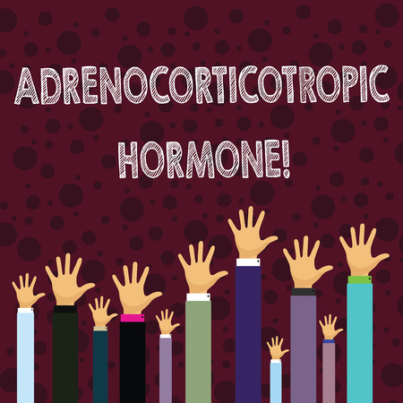 Writing note showing Adrenocorticotropic Hormone. Business concept for hormone secreted by pituitary gland cortex Businessmen Hands Raising Up Above the Head, Palm In Front