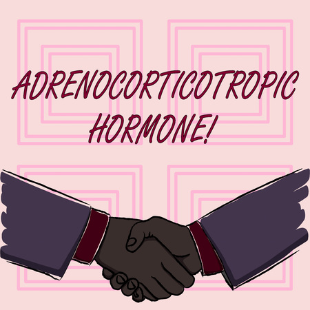 Conceptual hand writing showing Adrenocorticotropic Hormone. Concept meaning hormone secreted by pituitary gland cortex Businessmen Shaking Hands Form of Greeting and Agreement