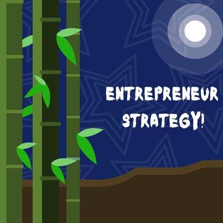 Text sign showing Entrepreneur Strategy. Business photo showcasing establish and sustain a competitive advantage Colorful Sets of Leafy Bamboo on Left Side and Moon or Sun with Round Beam