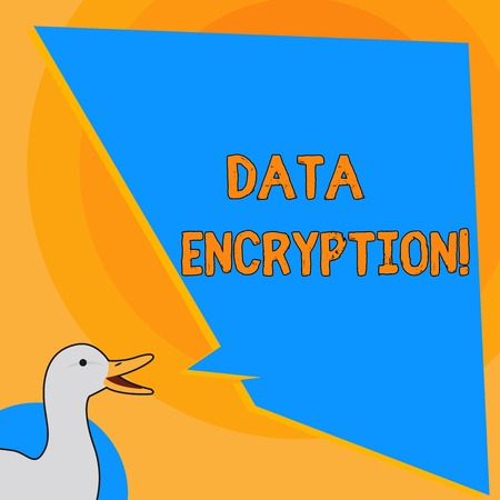 Writing note showing Data Encryption. Business concept for another form code that only showing with access secret key photo of Duck Speaking with Uneven Shape Blank Blue Speech Balloon