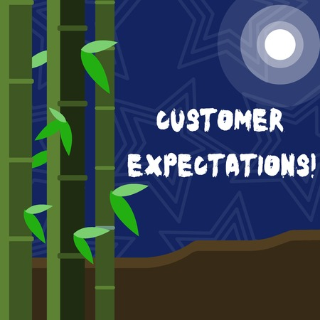 Text sign showing Customer Expectations. Business photo showcasing Perceivedvalue clients seek from the buying of a good Colorful Sets of Leafy Bamboo on Left Side and Moon or Sun with Round Beam