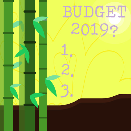 Conceptual hand writing showing Budget 2019 Question. Concept meaning estimate of income and expenditure for next year Colorful Set of Leafy Bamboo and Moon or Sun with Round Beam Archivio Fotografico
