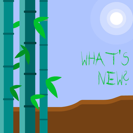 Word writing text What S New Question. Business photo showcasing when you ask someone about his current live events actions Colorful Sets of Leafy Bamboo on Left Side and Moon or Sun with Round Beam Stock Photo