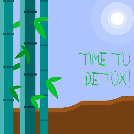 Word writing text Time To Detox. Business photo showcasing when you purify your body of toxins or stop consuming drug Colorful Sets of Leafy Bamboo on Left Side and Moon or Sun with Round Beam