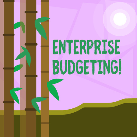 Word writing text Enterprise Budgeting. Business photo showcasing estimated income and expenses associated in business Colorful Sets of Leafy Bamboo on Left Side and Moon or Sun with Round Beam